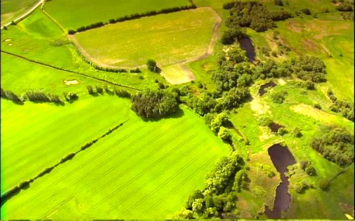 Danemarca va fi prima ţară cu agricultură 100% organică